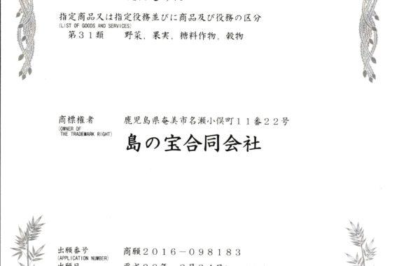 商標登録証 001